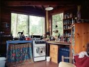 http://janinebaechle.com/files/gimgs/th-24_Aylas-kitchen-druck.jpg