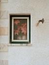 http://janinebaechle.com/files/gimgs/th-31_09-Fenster.jpg