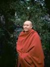 http://janinebaechle.com/files/gimgs/th-34_04g-Zong-Rinpoche-111,8.jpg